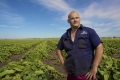 Lachlan Hauser - Grower, shot for AUSVEG