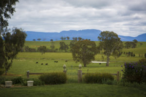View of the Grampians from the verandah of the Lexington property, near Moysten
